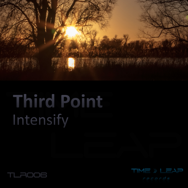 Third Point - Intensify