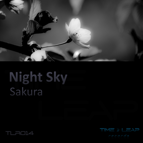 Night Sky - Sakura