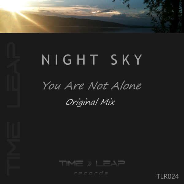 Night Sky - You Are Not Alone